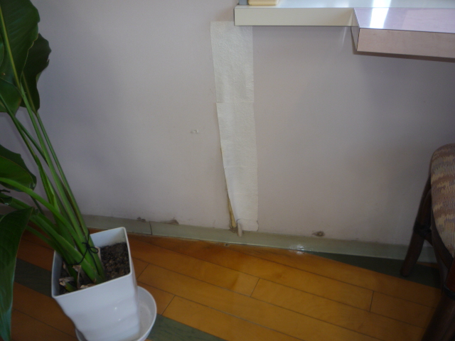 美容室 内装・外部リフォーム